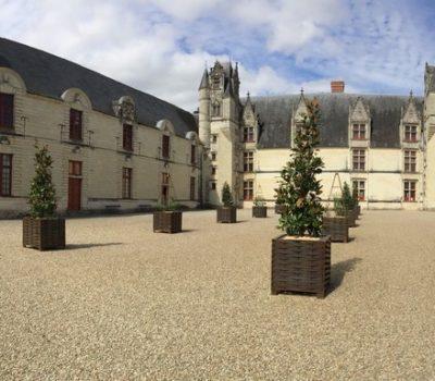 Cour du château de Goulaine - partenaire - lieu de réception